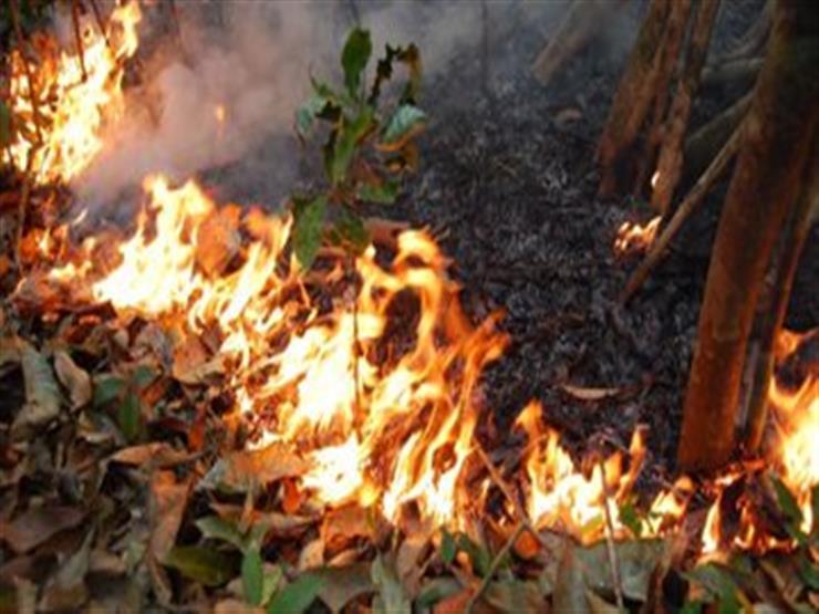 فرار مئات الأشخاص من منازلهم بسبب حرائق غابات في أستراليا