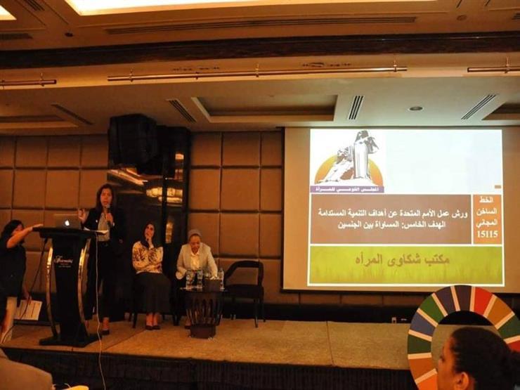 المجلس القومي للمرأة يشارك في ورشة عمل التنمية المستدامة