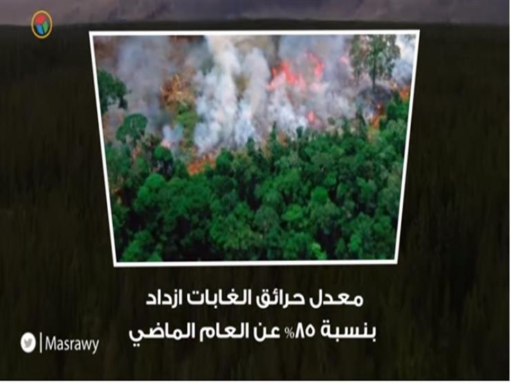 من الشرارة الأولى.. ١٠ معلومات عن حرائق غابات الأمازون
