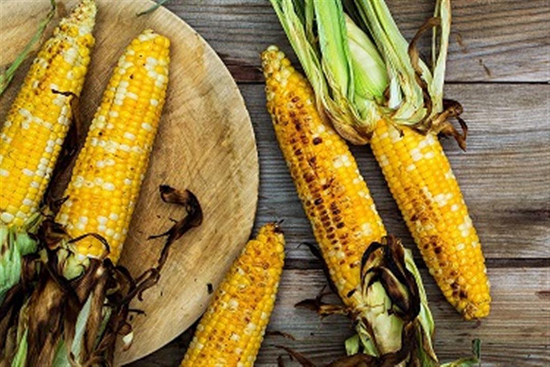 بالصور.. 4 فوائد يقدمها الذرة المشوي لصحتك أبرزها الوقاية من السكري