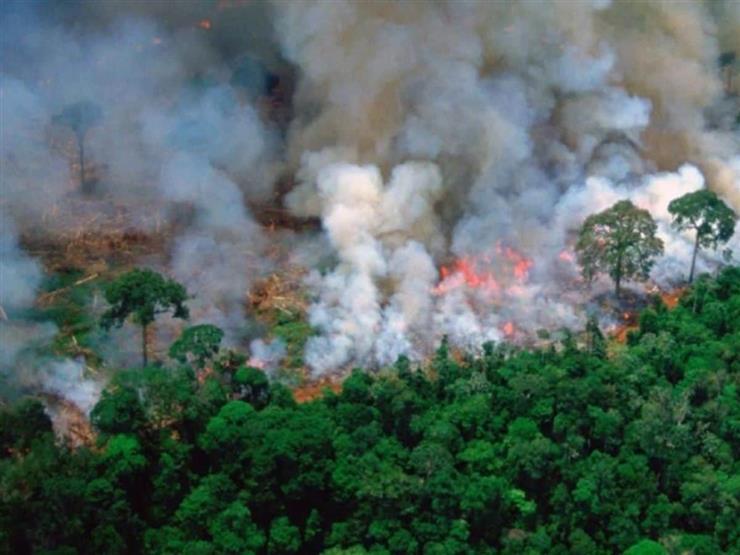 """رجال الأمازون.. حكايات من حرائق """"رئة الأرض"""" (ملف خاص)"""