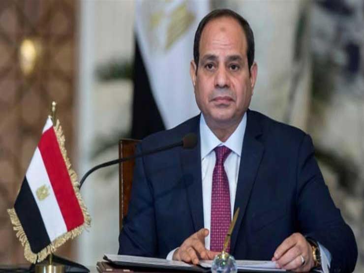 """""""المصريين بالخارج"""" يعلن تأييد الرئيس السيسي ويستنكر التطاول على القوات المسلحة"""
