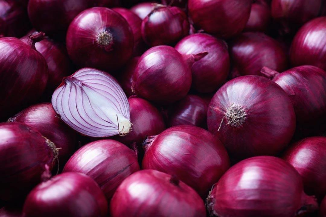 الزراعة: لا صحة لتراجع صادرات البصل