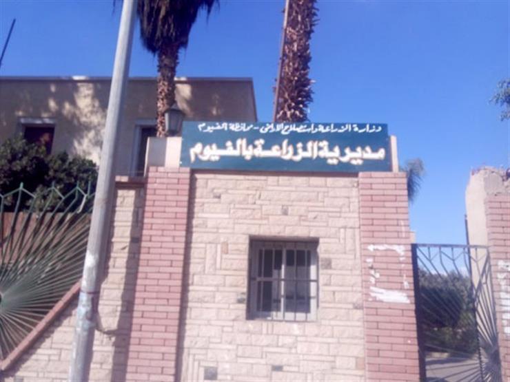 تكليف ربيع مصطفى مديرا لمديرية زراعة الفيوم