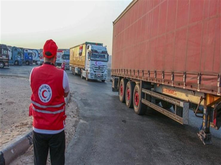 الهلال الأحمر المصري: تقديم 587 طن مساعدات مواد غذائية للسودان