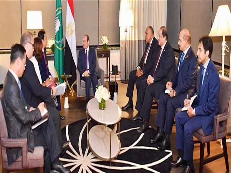 """مدير """"الفاو"""" للسيسي: نتابع نشاط مصر الضخم في مشروعات الزراعة والتنمية"""