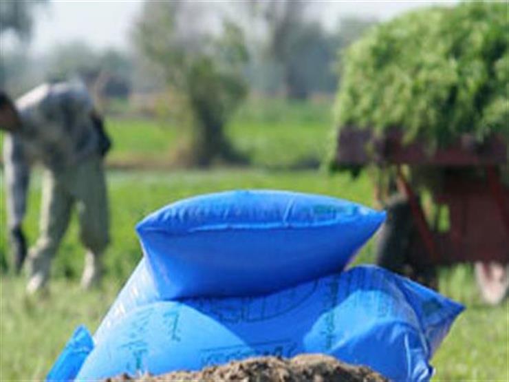 """""""الزراعة"""": لا صحة لنقص الأسمدة.. والصرف اليوم لـ4محاصيل شتوية"""