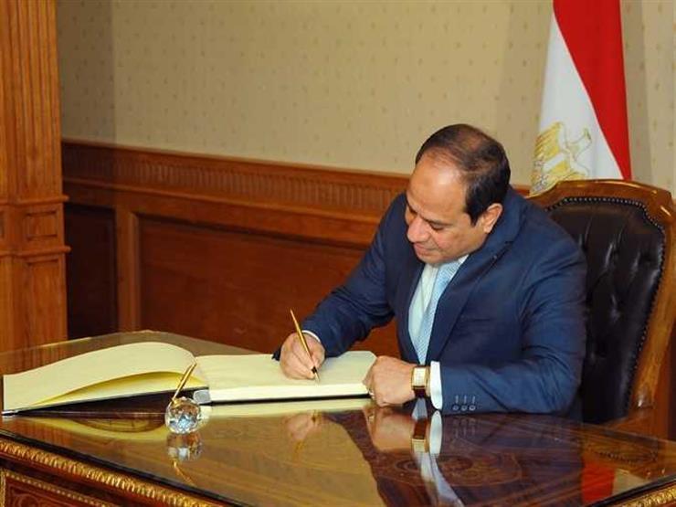 نشاط السيسي في أسبوع: زيارة إلى الكويت.. واستقبال رئيس البنك الدولي