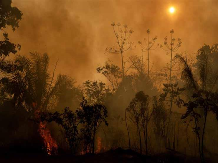 """ليالي """"أكري"""" الحزينة.. مصور """"ناشيونال جيوجرافيك"""" يسرد كواليس حرائق الأمازون (خاص)"""