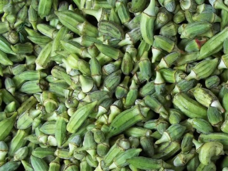زيادة الخيار والبامية.. أسعار الخضروات والفاكهة بسوق العبور