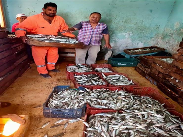 أسعار المأكولات البحرية والأسماك في سوق العبور اليوم الأحد