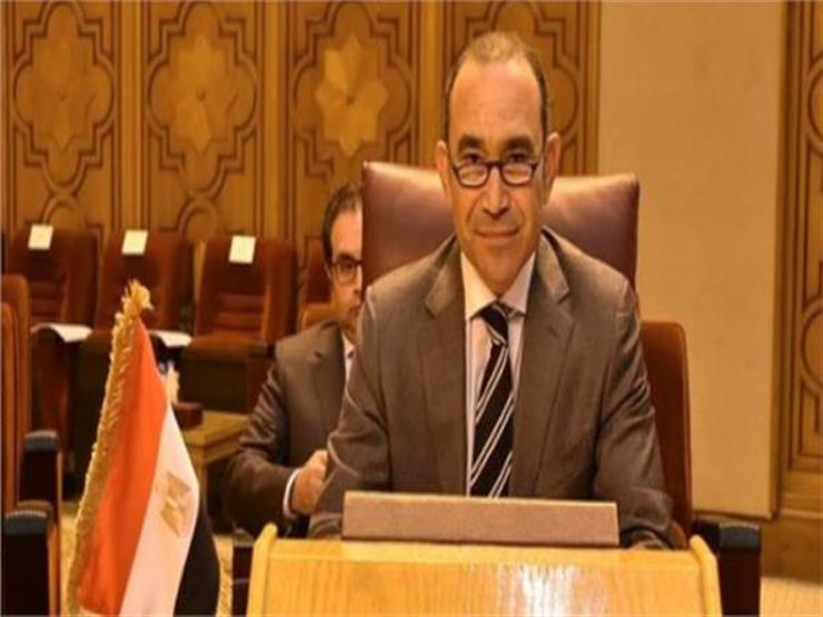 سفير مصر بألمانيا يدعو المصريين بالداخل والخارج إلى التمسك بحقوقهم الدستورية