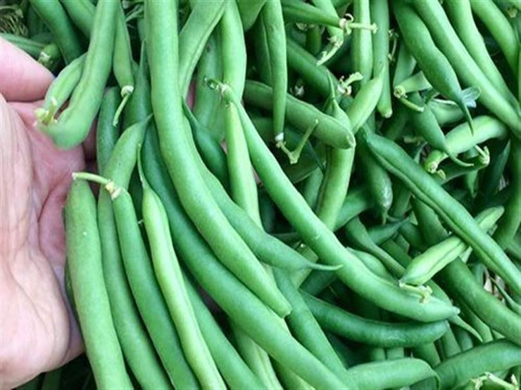 تراجع أسعار الفاصوليا مع زيادة المعروض بسبب محصول المنوفية والجيزة