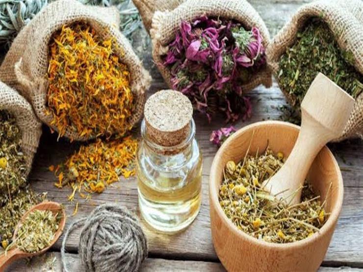 علاج عشبي شائع قد يمنع الصلع.. اعرفه