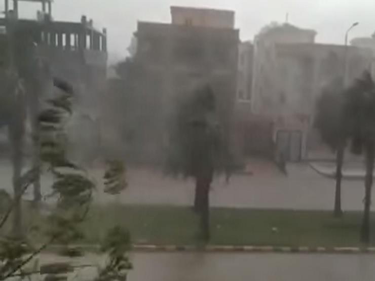 """""""تكاد تقتلع الأشجار"""".. رياح شديدة وبرودة تضرب مدينة برج العرب"""
