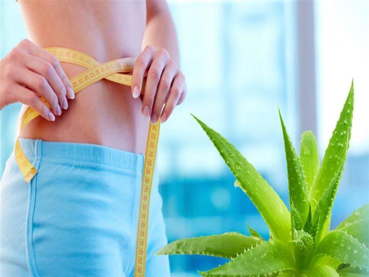 يخلصك من الكرش.. إليك طريقة استخدام الصبار في فقدان الوزن