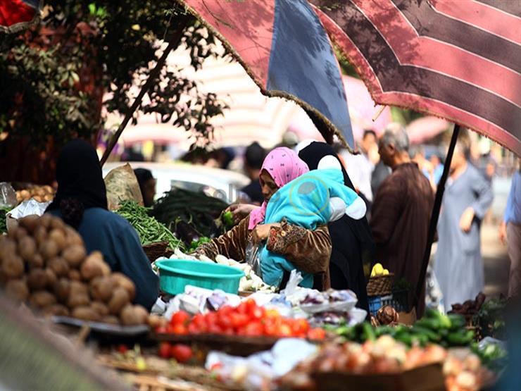 البطاطس عند 1.75جنيه للكيلو.. أسعار الخضر والفاكهة اليوم