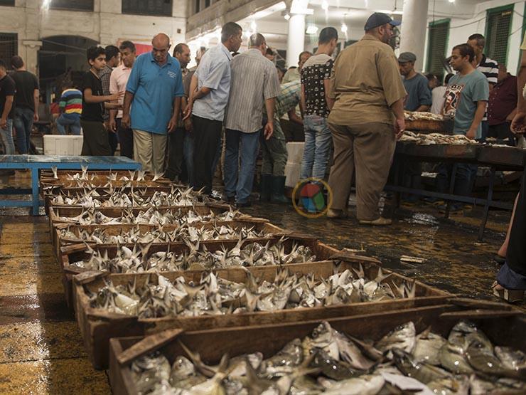ماذا فعلت أسعار الأسماك في الأسبوع الرابع من رمضان؟