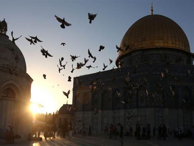 """بعد عرض """"النهاية"""" و""""أم هارون"""".. هل تؤثر الدراما على القضية الفلسطينية؟"""