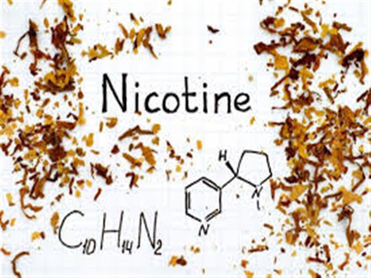 علماء يدرسون استخدام النيكوتين في علاج كورونا.. و الصحة العا   مصراوى