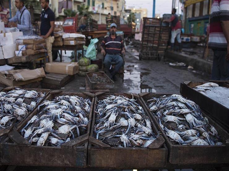 أسعار المأكولات البحرية والأسماك في سوق العبور اليوم