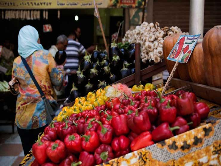 زيادة الطماطم وتراجع البطاطس.. أسعار الخضروات في سوق العبور في أسبوع