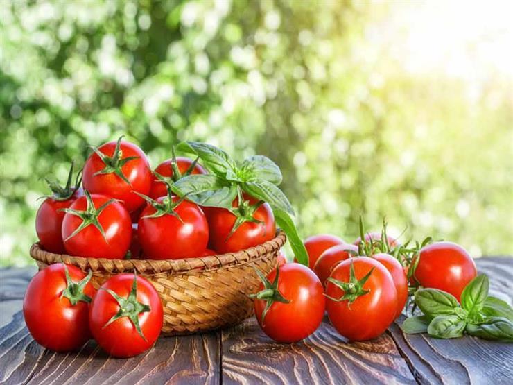 """""""الثلاجة أم درجة حرارة الغرفة"""".. ما هو أفضل مكان لحفظ الطماطم؟"""