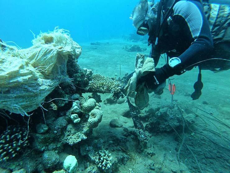 اليوم.. حملة لتنظيف قاع البحر الأحمر في اليوم العالمي للتنظيف