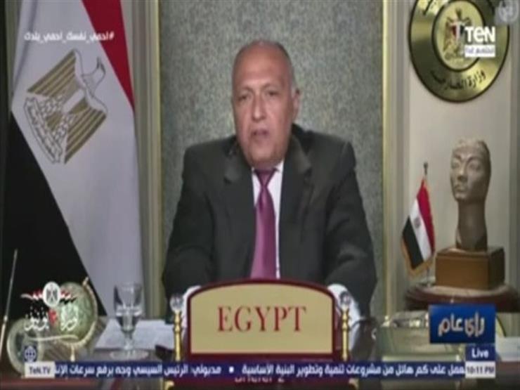 مستنسخ.. تعرف على التمثال الموجود يسار سامح شكري في جلسة مجلس الأمن