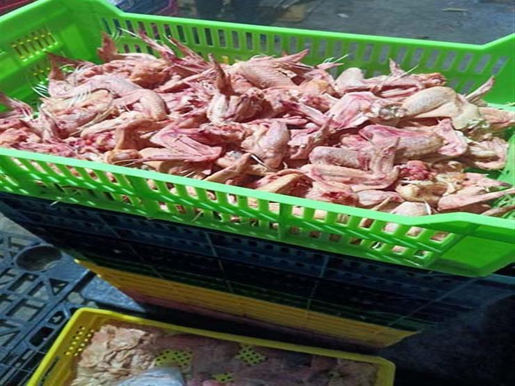 الجيزة: ضبط 18 طن دواجن ولحوم غير صالحة للاستهلاك الآدمي بالهرم والوراق وبولاق