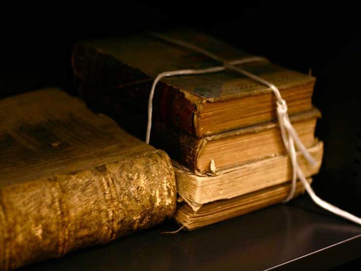 مرشحًا أفضل الكتب.. نصيحة أمين الفتوى لمن يقرأ في التاريخ الإسلامي