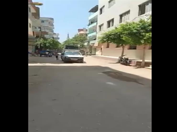 """بالفيديو.. مسيرة بالـ""""دي جى"""" لدعوة المواطنين للمشاركة في انتخابات الشيوخ بالشرقية"""