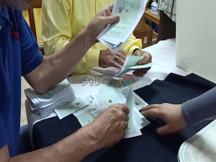 غلق أبواب لجان الاقتراع وبدء عمليات الفرز بإعادة انتخابات الشيوخ في المنوفية