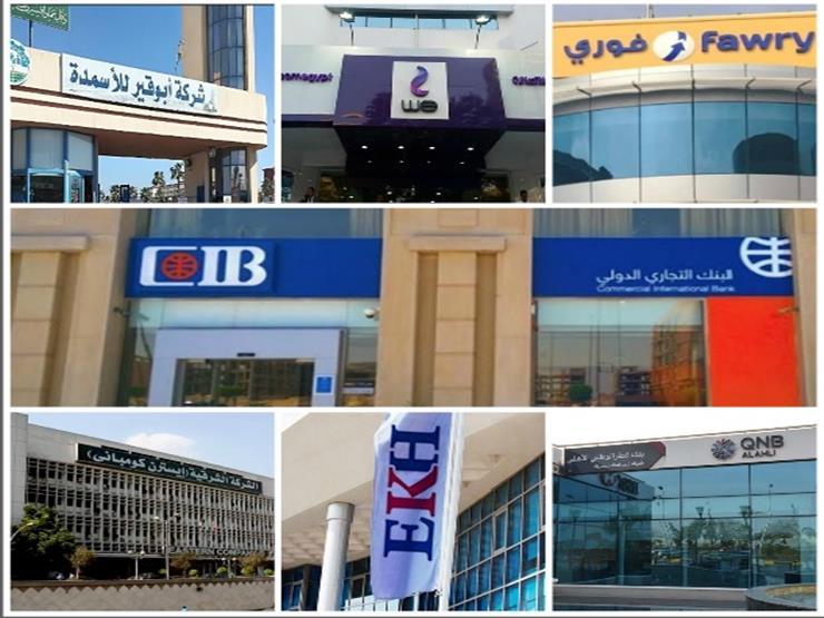 بعد انضمام فوري.. 7 شركات في نادي المليار دولار ببورصة مصر (إنفوجرافيك)