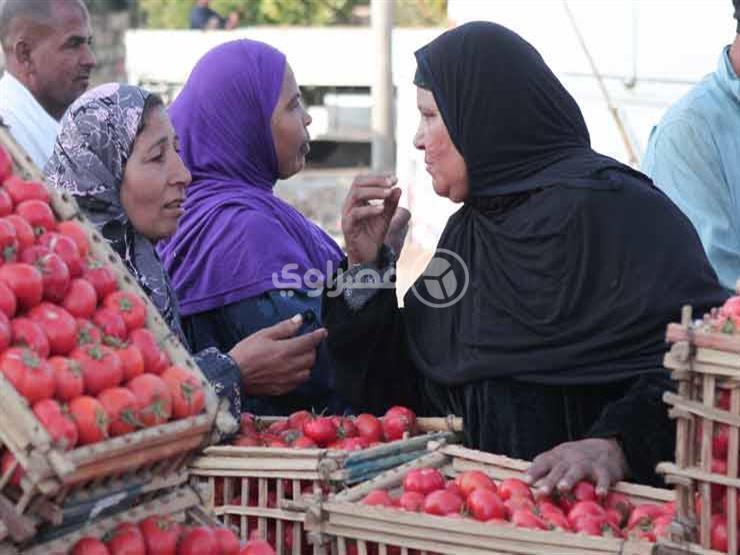 ارتفاع 5 أصناف خضراوات في سوق العبور خلال تعاملات اليوم الاثنين