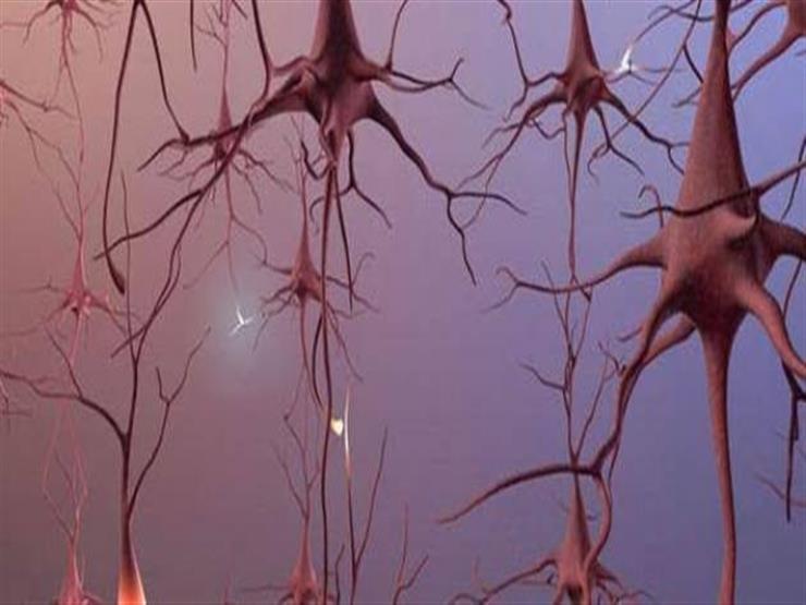 بعد تحليل أدمغة متوفين.. كورونا قد يكون قادرًا على غزو خلايا المخ