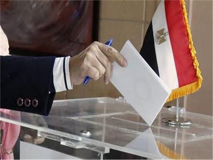 """سفارة مصر بواشنطن توضح إجراءات التصويت في انتخابات """"النواب"""""""