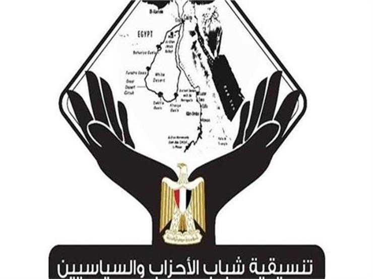 8 مشاهد.. تنسيقية الأحزاب والسياسيين تصدر تقريرها الختامي بشأن انتخابات الشيوخ