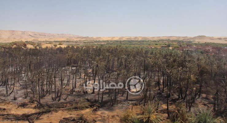 الدمار الذي خلفه حريق الراشدة (5)