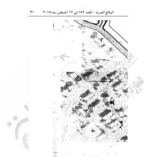 محافظ القاهرة10