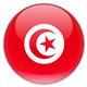 ملخص نتيجة مباراة تونس وليبيا و نسور قرطاج تحلق في سماء المونديال رغم التعادل
