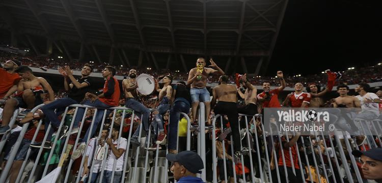 أحمد مجاهد: لدينا أكثر من 12 ملعبا لاستضافة كأس الأمم