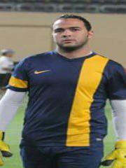 محمود الغرباوي