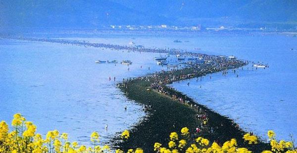 بالصور. معجزة انشقاق البحر بسيدنا موسى تتكرر سنوياً فى كوريا L_9878779221we98f3a2